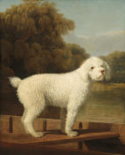George Stubbs - White Poodle in a Punt, c. 1780