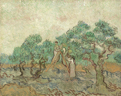 Vincent van Gogh - The Olive Orchard, 1889