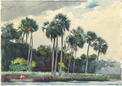 Winslow Homer - Red Shirt, Homosassa, Florida, 1904